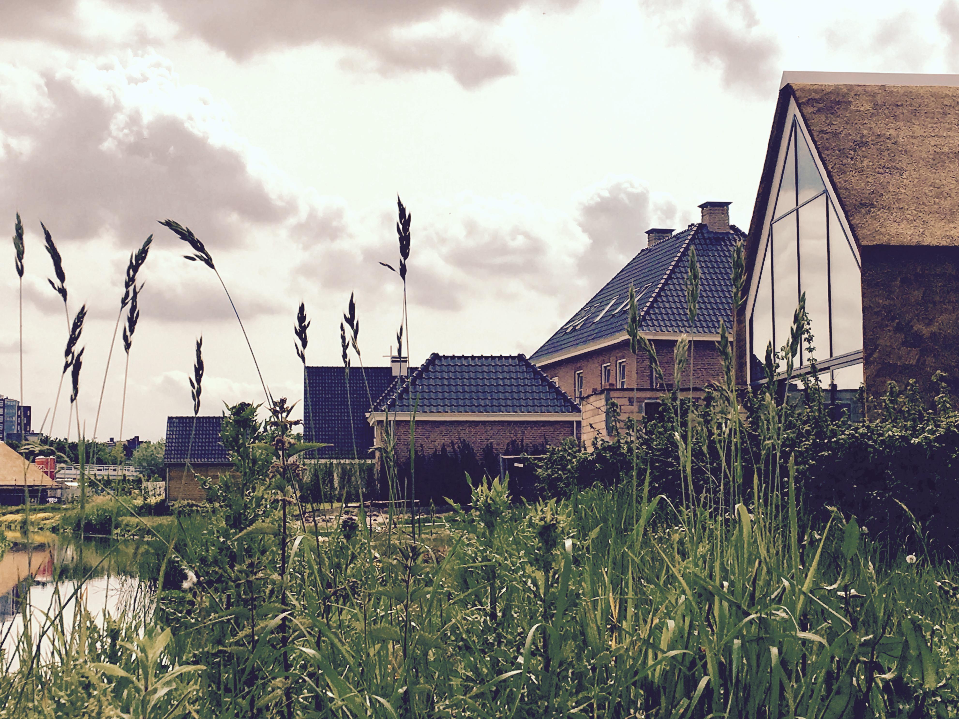 modern-landelijke-villa-maassluis-architectuur02